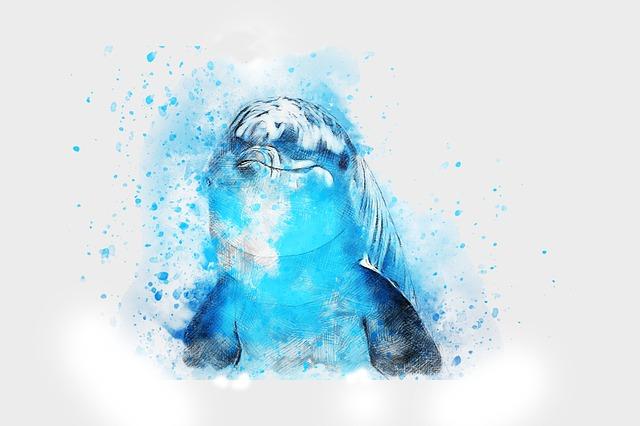 obrázek delfína