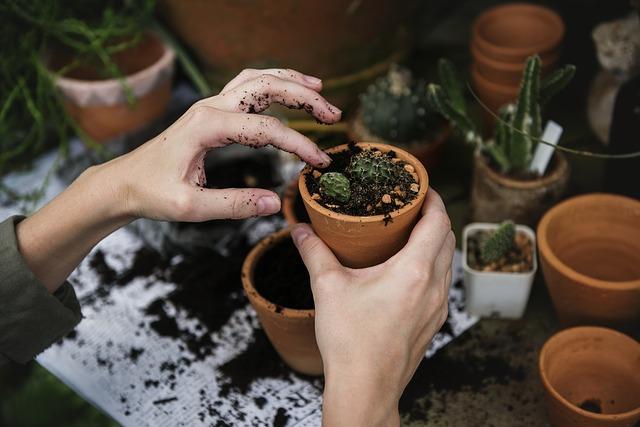 ruce s květináčkem